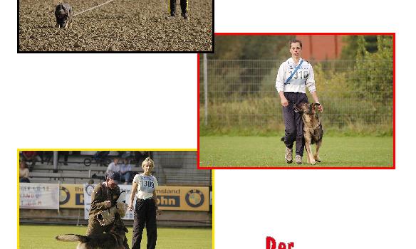 Der Schutzhund – A védőkutya